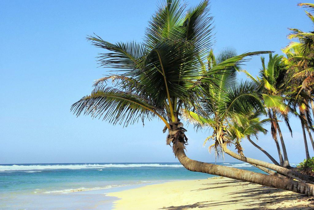 Reiseziel im Februar - Kuba