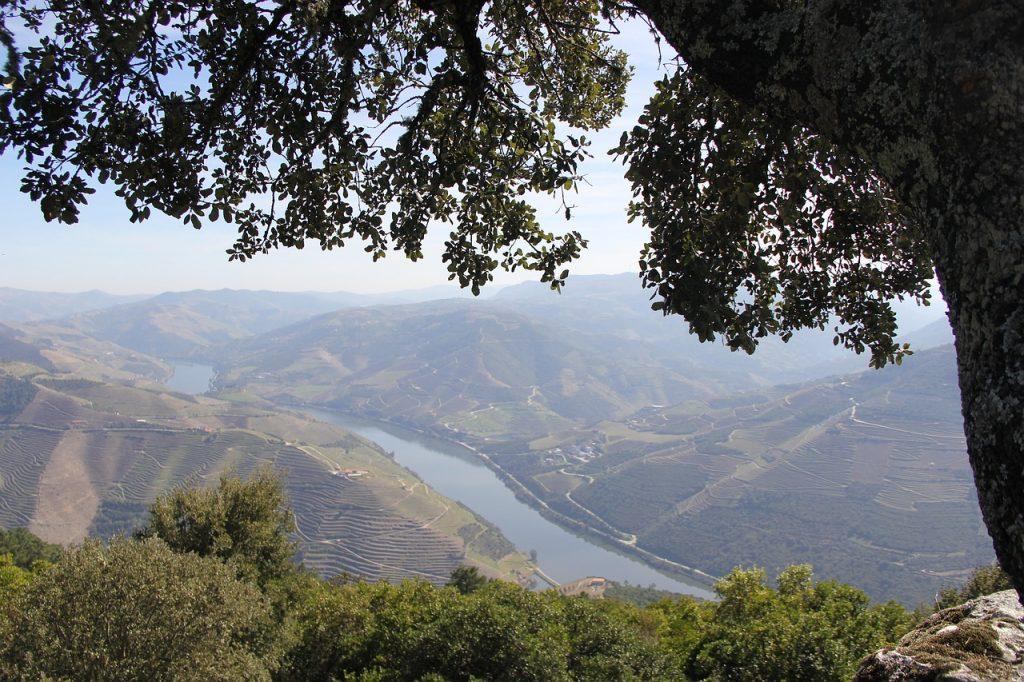 Das Dourotal in Portugal Reiseziele im März
